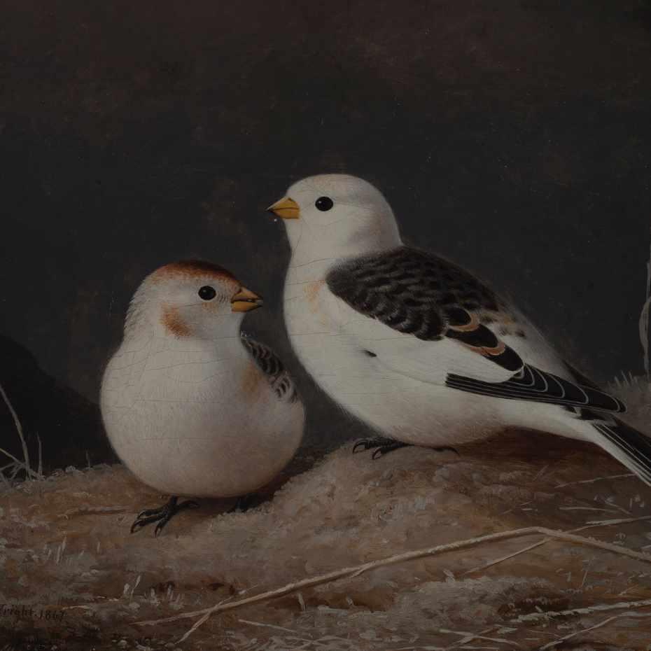 Ferdinand von Wright, Pulmusia, öljy kankaalle, 1876.